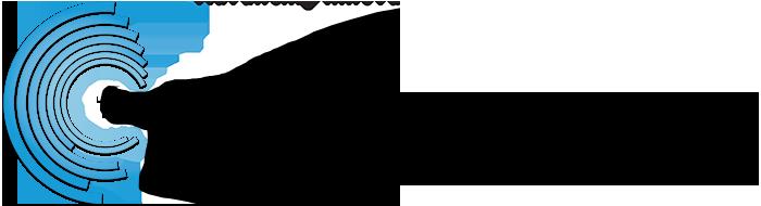 ds_logo-copy1